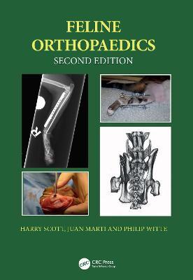 Feline Orthopaedics